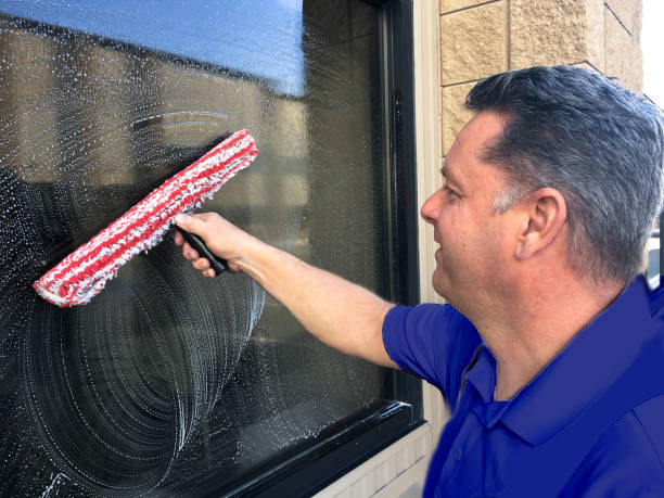 local-window-cleaners