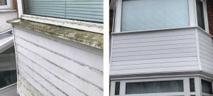 Fascia cleaning - Before and After